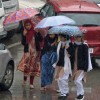 Light to moderate rain predicted for next 24 hours
