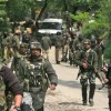 Forces launch cordon-and-search operation in Kupwara forest