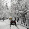 Fresh snowfall brings down temperature in Himachal Pradesh