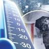 Post snowfall night, temperature dips across Kashmir