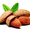 Almond's fail to satiate growers taste