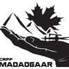 CRPF's 'Madadgaar' helps 250 Kashmiri students reach home